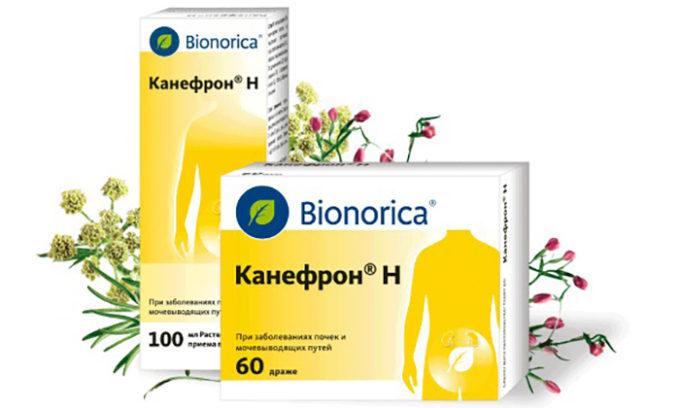 Канефрон — таблетки на основе экстрактов золототысячника, любистка, розмарина, шиповника. В отличие от антибиотиков, не нарушает микрофлору кишечника