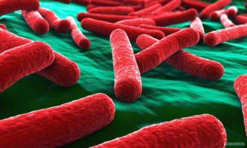 Возбудителями данного заболевания принято считать кишечные палочки