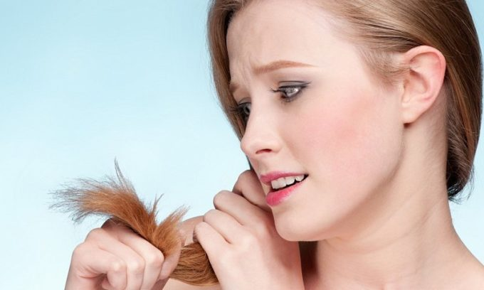 Сухость и ломкость волос может появиться от нарушений работы щитовидки