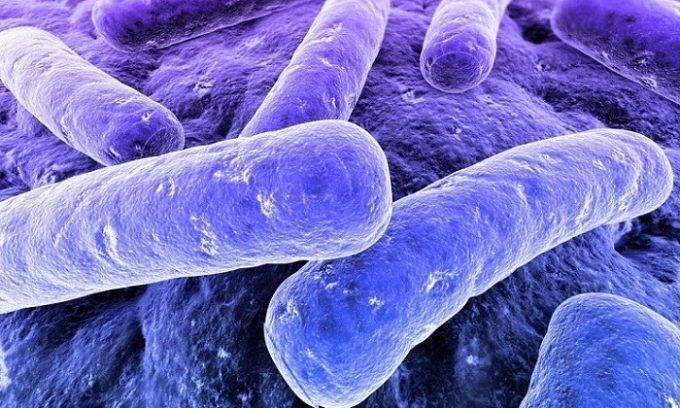 Тержинан активизирует собственный иммунитет организма, вследствие чего микроорганизмы погибают