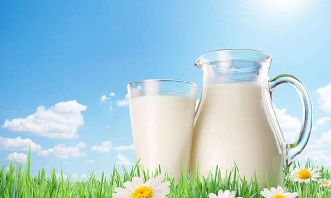 Желательно разбавлять чистотел молоком, чтобы понизить его токсичные свойства
