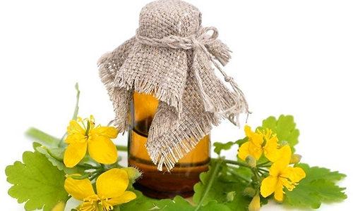 Настойка из чистотела также помогает в борьбе с аутоиммунным тиреоидитом щитовидной железы
