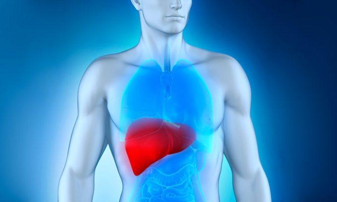 Подобная диагностика необходима для получения данных, касающихся формы и размера органов