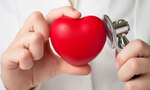 Гормон Т3 выполняет такие важные для здоровья человеческого организма функции. Например, оказывает положительное хроно- и инотропное воздействие на сердце