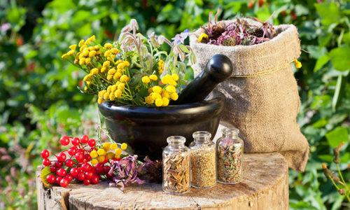 Доказано научными исследованиями, что лекарственные травы, другие дары природы способны оказать помощь в исцелении