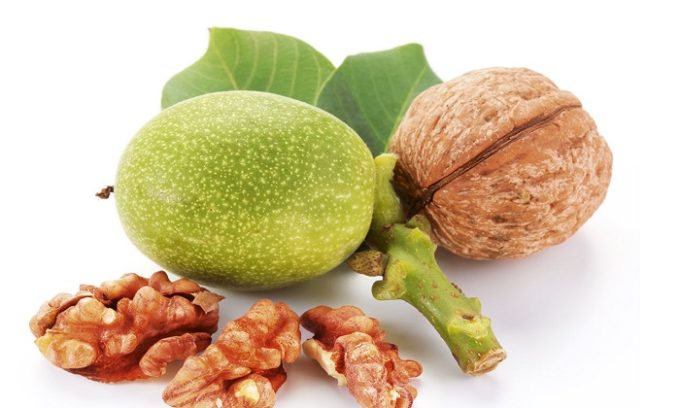 В народной медицине используют зеленые грецкие орехи или перегородки уже созревших