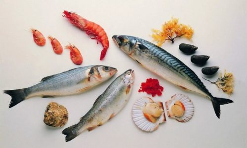 Морепродукты хорошо пополняют нехватку йода в организме